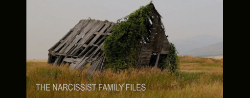 The Narcissist Family Files
